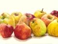 10 Appels
