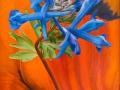 Corydalis en Papaver