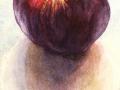 Appel Rode Herfst Calville