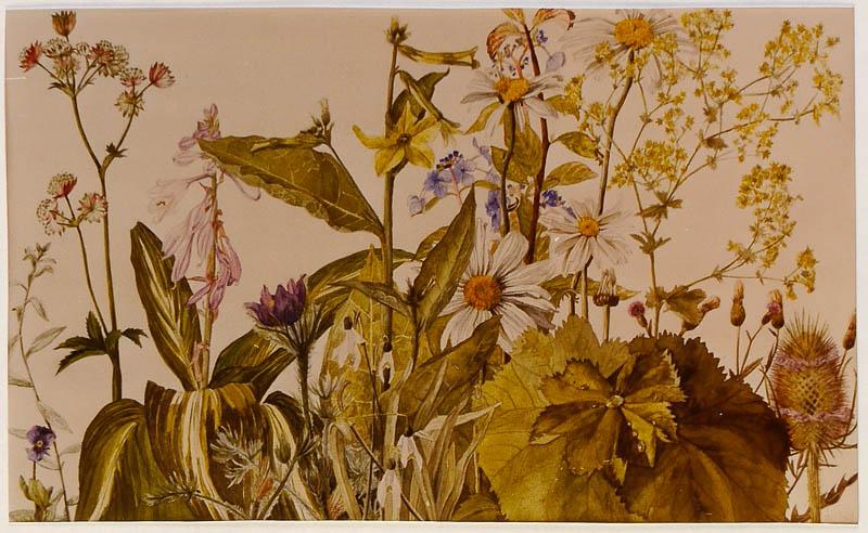10 bloemen