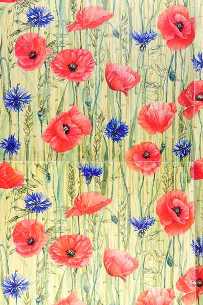 korenbloemen, papavers en graan, dessin