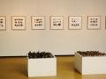 Foto expositie serie aardappel werken