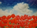 Rode tulpen en blauwe lucht