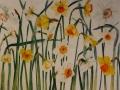 Narcissen (veel oranje)