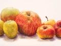 7 Appels
