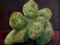 Aardappel 7 koppige schildpad