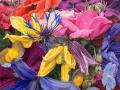 Veel bloemen