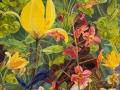 Geel, Groen en Rode  Voorjaars bloemen